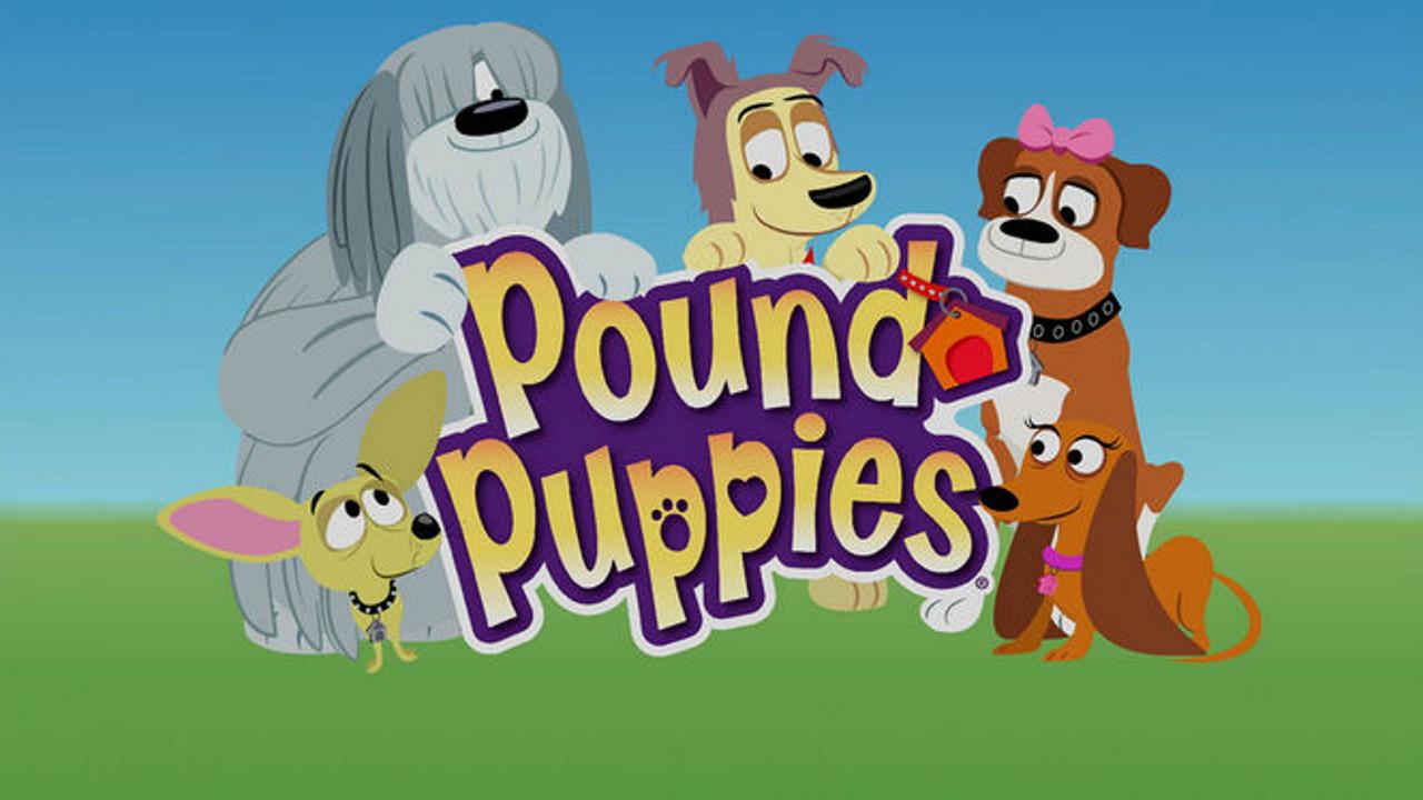 TV Time Pound Puppies 2010 TVShow Time