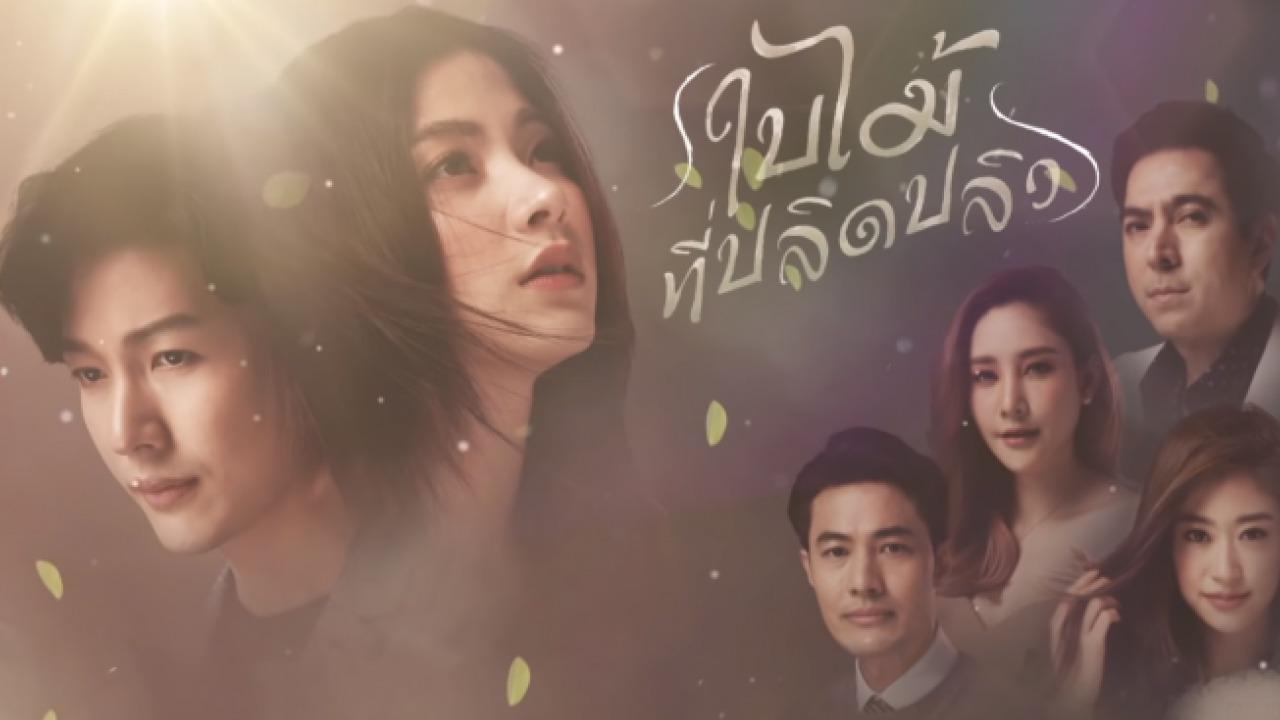 TV Time - Bai Mai Tee Plid Plew (ใบไม้ที่ปลิดปลิว) (TVShow Time)