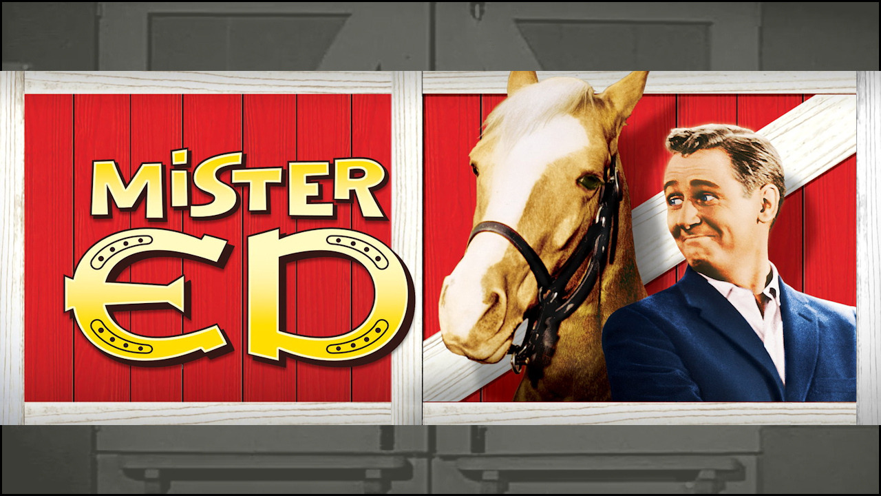 Mister Ed  – SE1 – Ep1 – The First Meeting