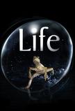 Life (2009)