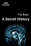 The Brain: A Secret History