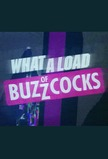 What a Load of Buzzcocks