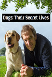 Dogs: Their Secret Lives