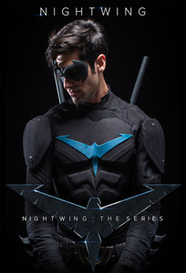 Nightwing: The Series