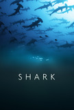 Shark (2015)
