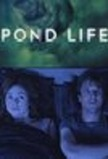 Pond Life (Doctor Who)