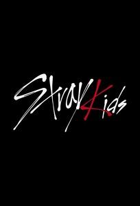 Stray Kids vLive show