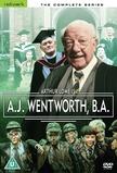 A. J. Wentworth, B. A.