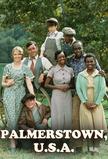 Palmerstown, U.S.A.