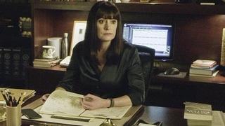 TV Time - Criminal Minds S14E13 - Chameleon (TVShow Time)