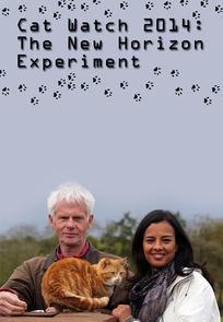 Cat Watch 2014: The New Horizon Experiment