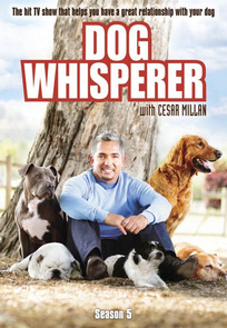 The Dog Whisperer